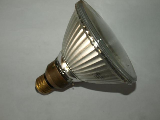 Simi Valley Lighting lamp Par 38