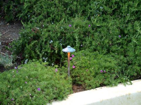 Simi Valley Lighting Landscape Lighting Mushroom Light