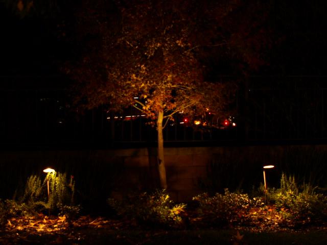 Simi Valley Lighting Landscape Lighting